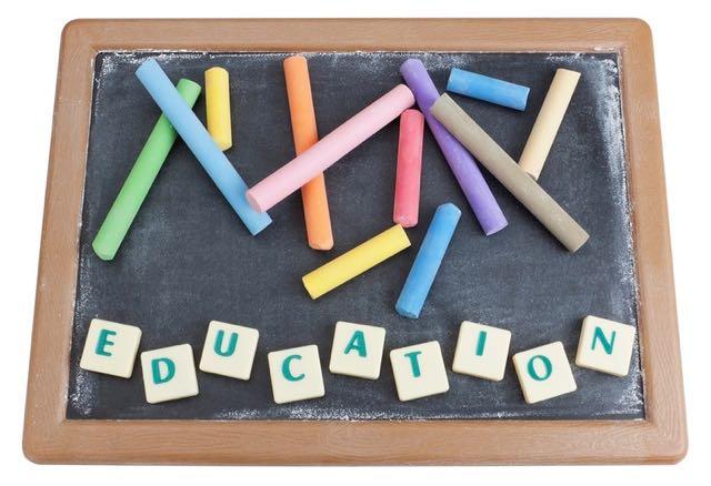 rapport orientation scolaire en france
